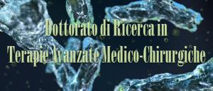 Pubblicato Bando di Concorso per il Dottorato di Ricerca in Terapie Avanzate Medico-Chirurgiche